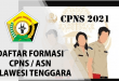 FORMASI CPNS SULTRA